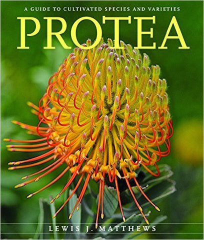Protea: A Guide to Cultivated Species and Variaties | Lewis J. Matthews