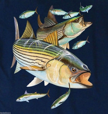 "Guy Harvey ""Striper Snacks"" Design/ Back-Print Tee w/ Pocket in Navy"