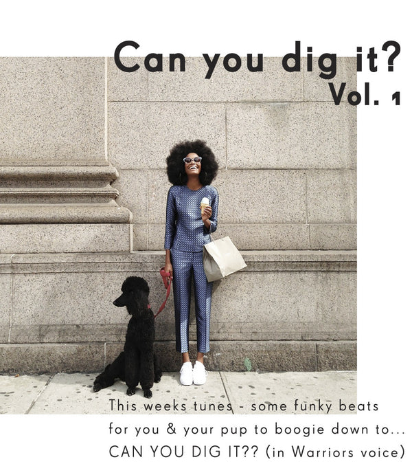 Can you dig it? Vol. 1