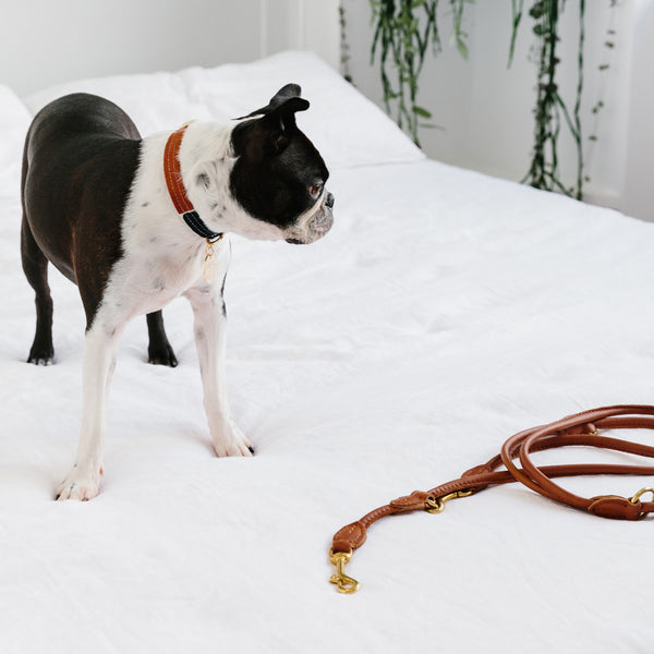 Rex Adjustable Nappa Leather Leash - Vintage Tan