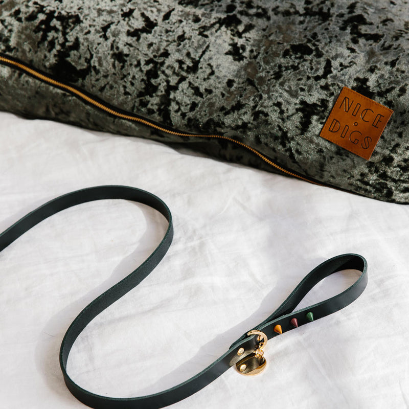 Original Spike Leather Dog Leash - Forest Noir