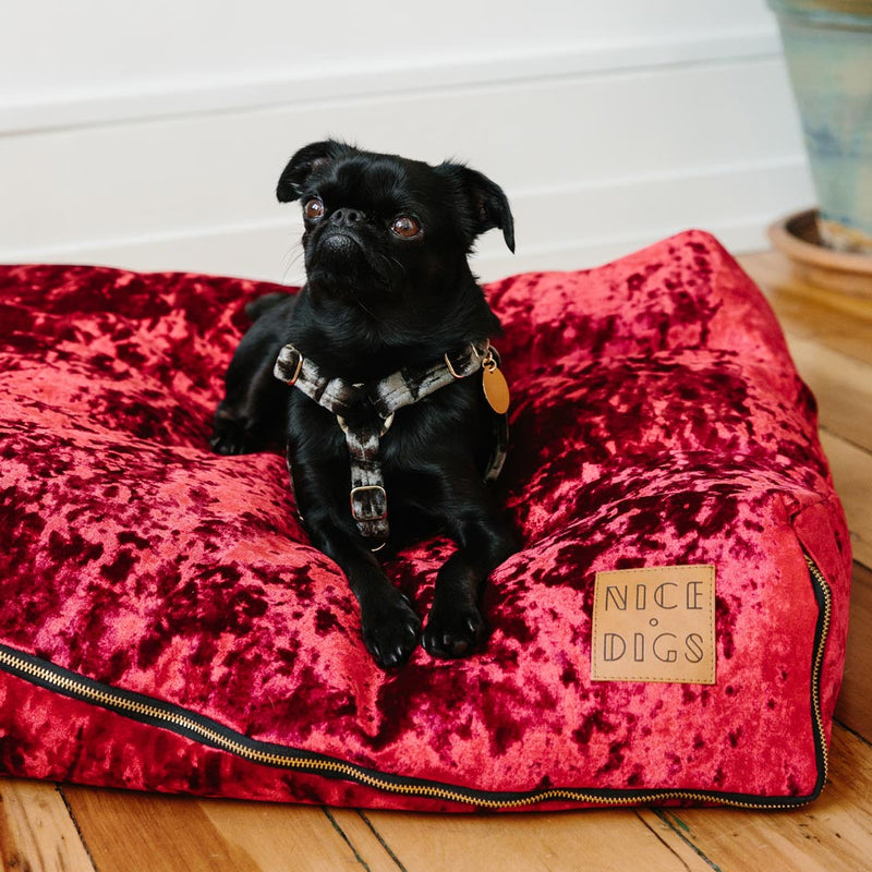 Velvet Slouch Dog Bed - Crimson