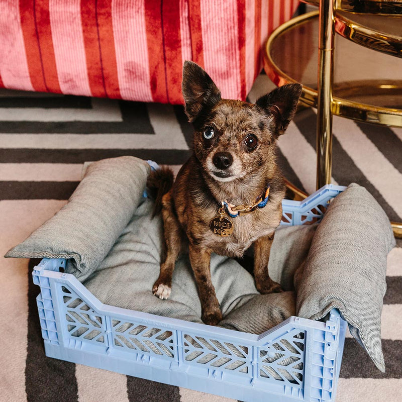 Light Denim Crate Dog Bed