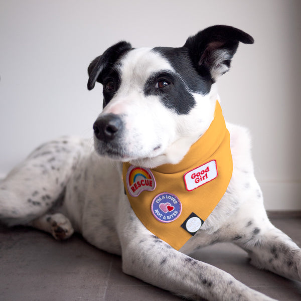 Linen Dog Bandana - Sunflower