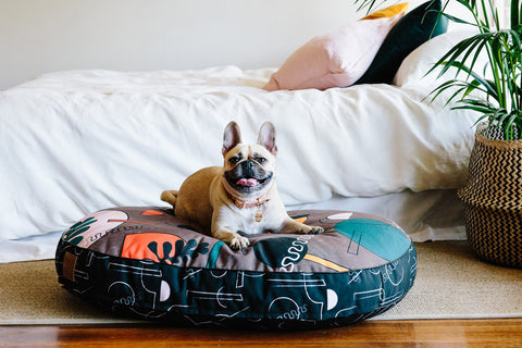 Master Thought Digitally Printed Dog Bed