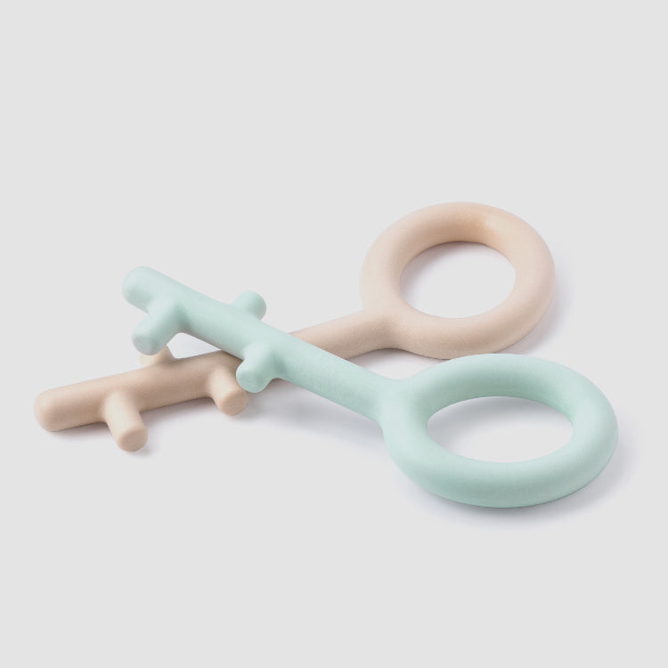 Key Pull Dog Toy - Blue