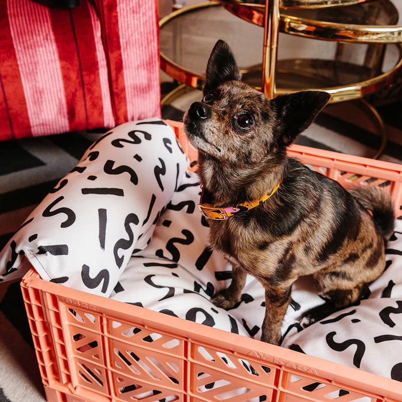 Ziggy Printed Crate Dog Bed