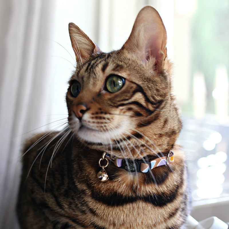 Rock Candy Leather Cat Collar