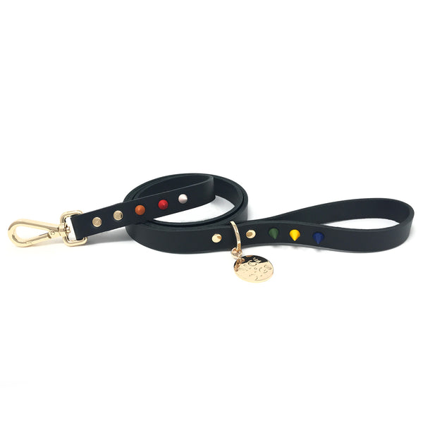 Spike Leather Dog Leash - Jungle Noir