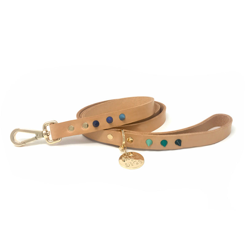 Spike Leather Dog Leash - Lush