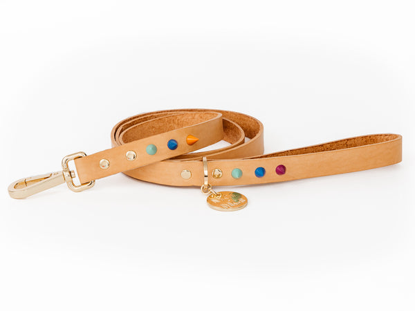 Spike Leather Dog Leash - Palm Springs