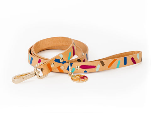 Tiggy Leather Dog Leash - Palm Springs