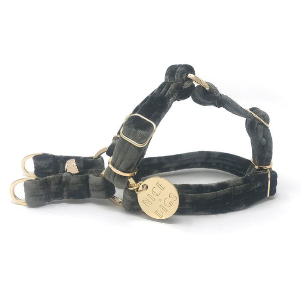 Velvet Non-Pull Dog Harness - Sage