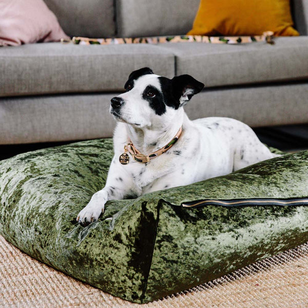 Velvet Slouch Dog Bed - Evergreen