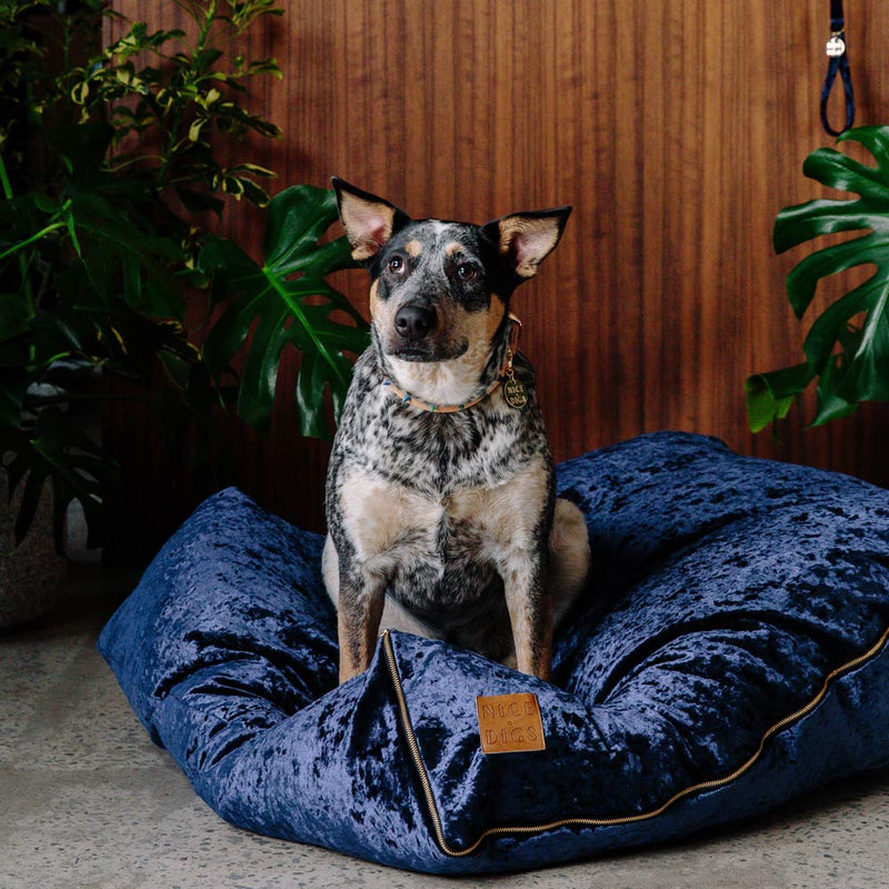 Velvet Slouch Dog Bed - Midnight
