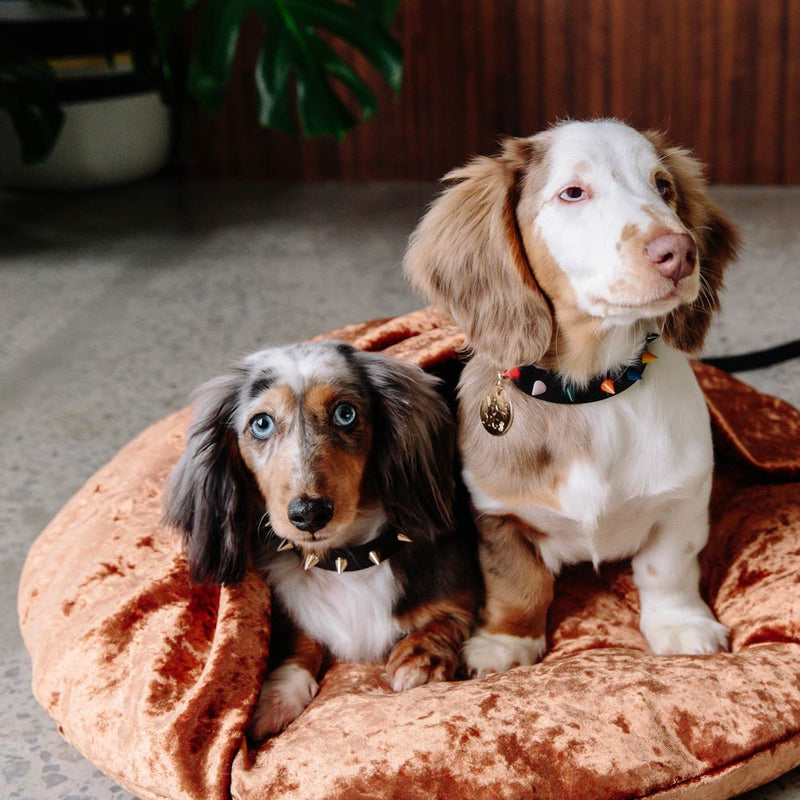 Velvet Snuggle Dog Bed - Copper