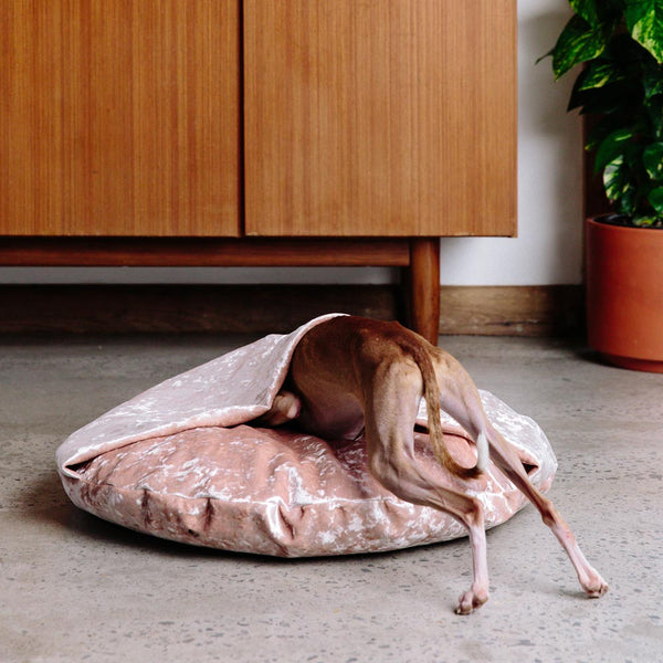 Velvet Snuggle Dog Bed - Peach