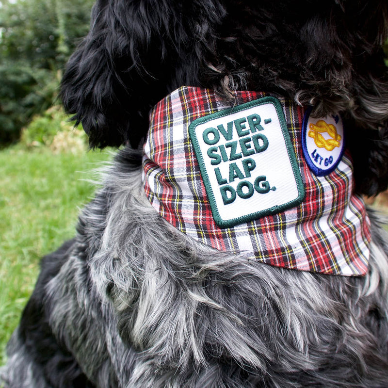 Oversized Lap Dog Merit Badge