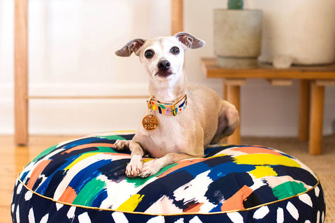 Broad Strokes Digitally Printed Dog Bed