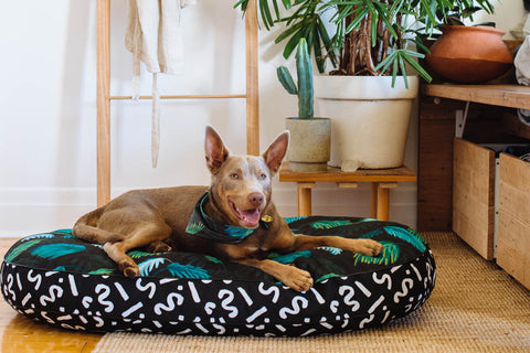 Jungle Fever Digitally Printed Dog Bed