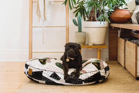 Miami Shade Digitally Printed Dog Bed