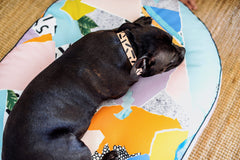 Scrapbook Digitally Printed Dog Bed