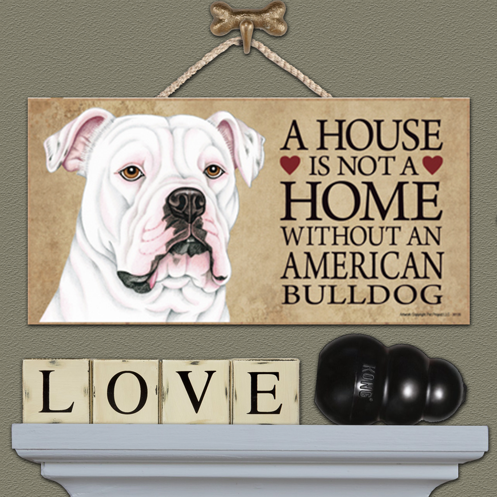 House is Not a Home - American Bulldog White