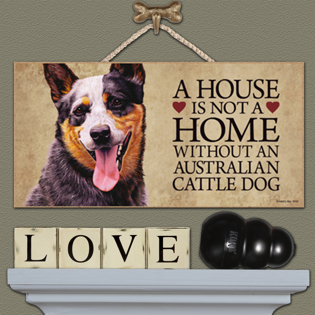 House is Not a Home - Australian Cattle Dog