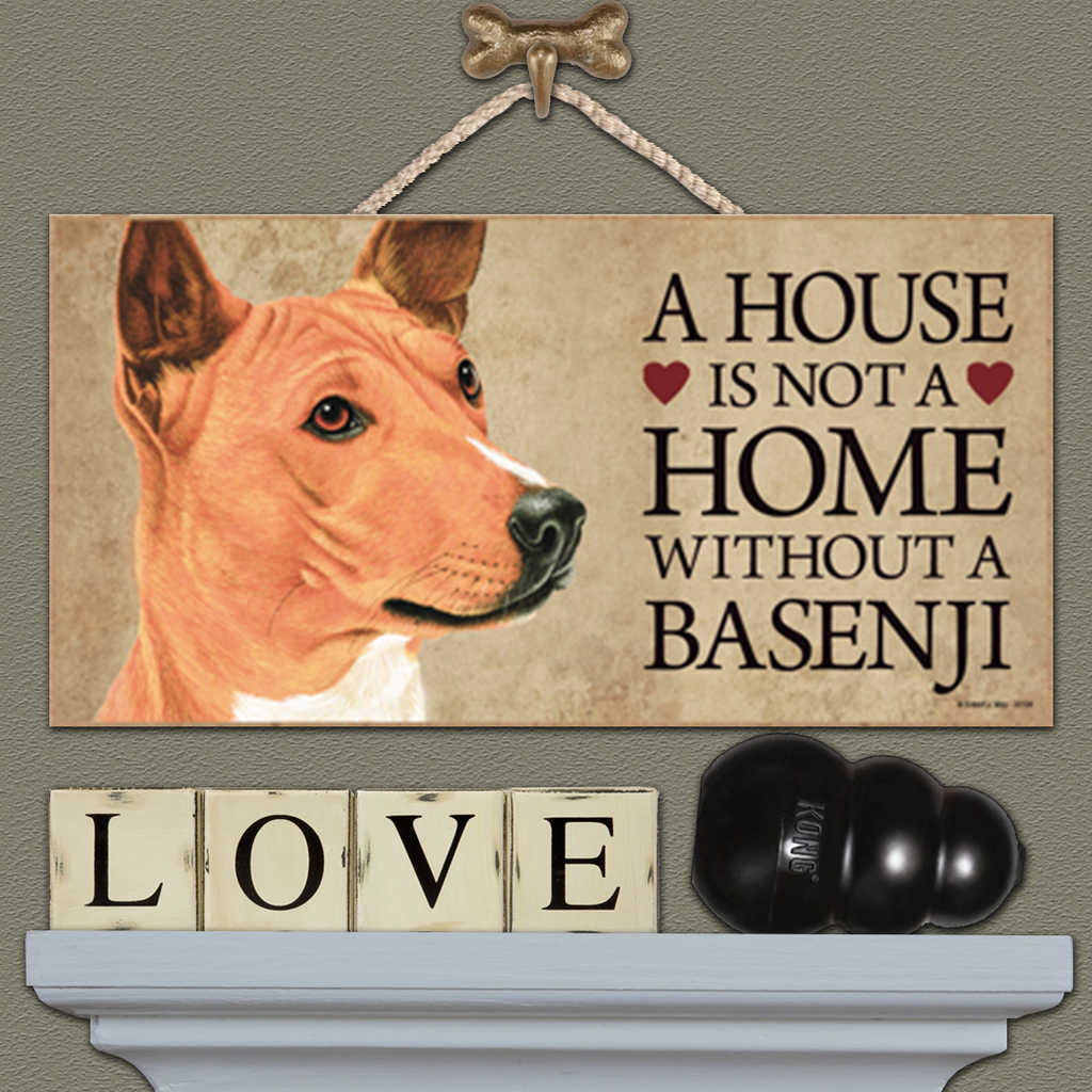 House is Not a Home - Basenji