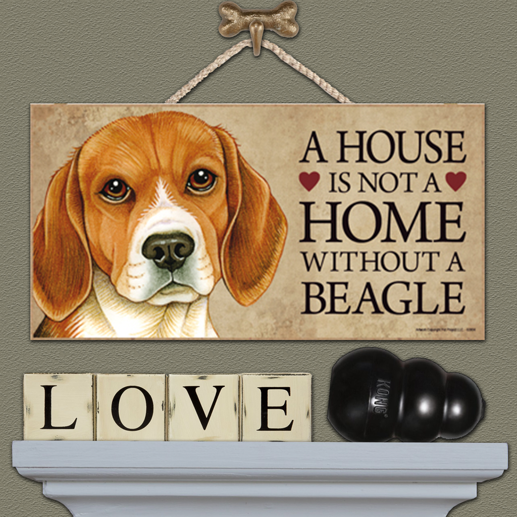 House is Not a Home - Beagle