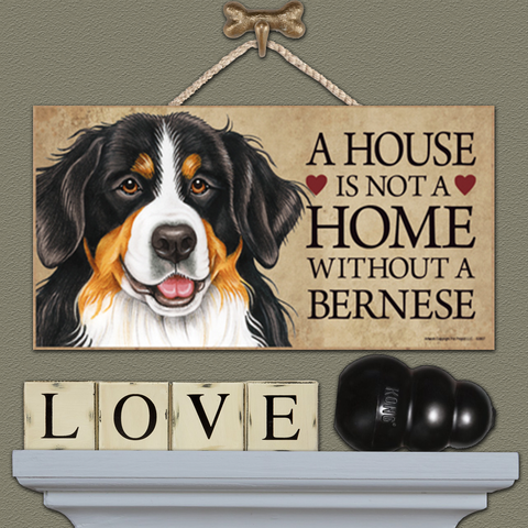 A House is Not a Home - Bernese
