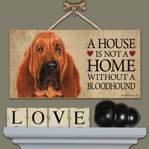 House is Not a Home - Bloodhound