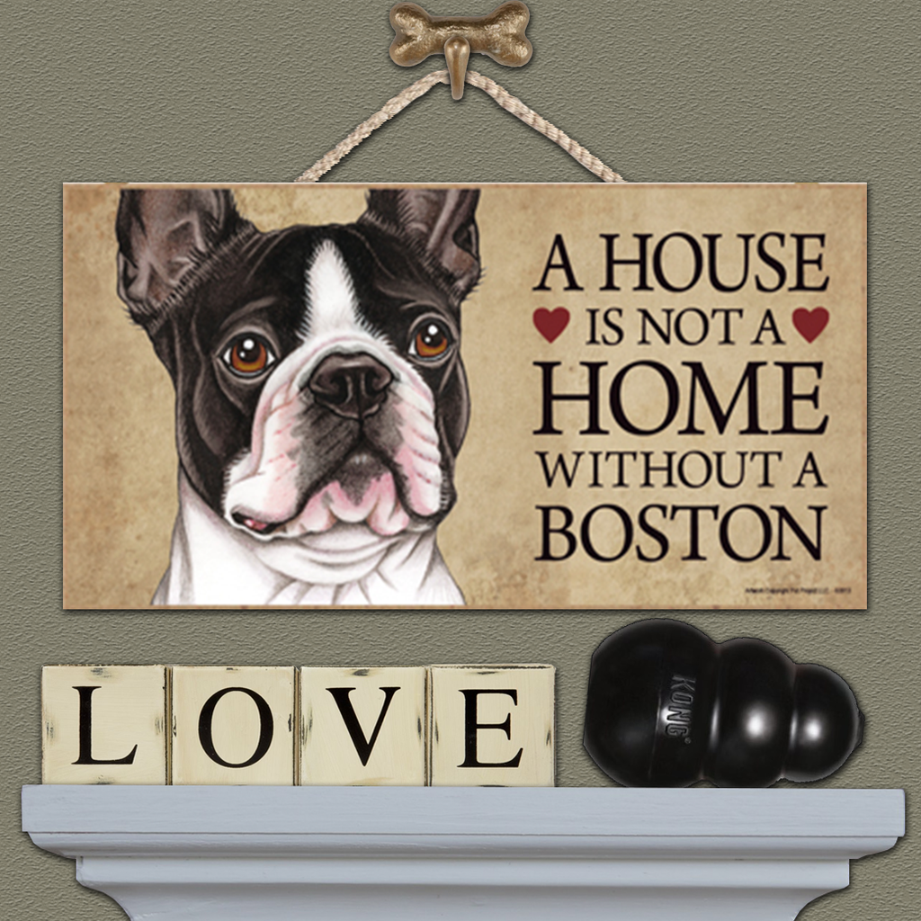 House is Not a Home - Boston Terrier