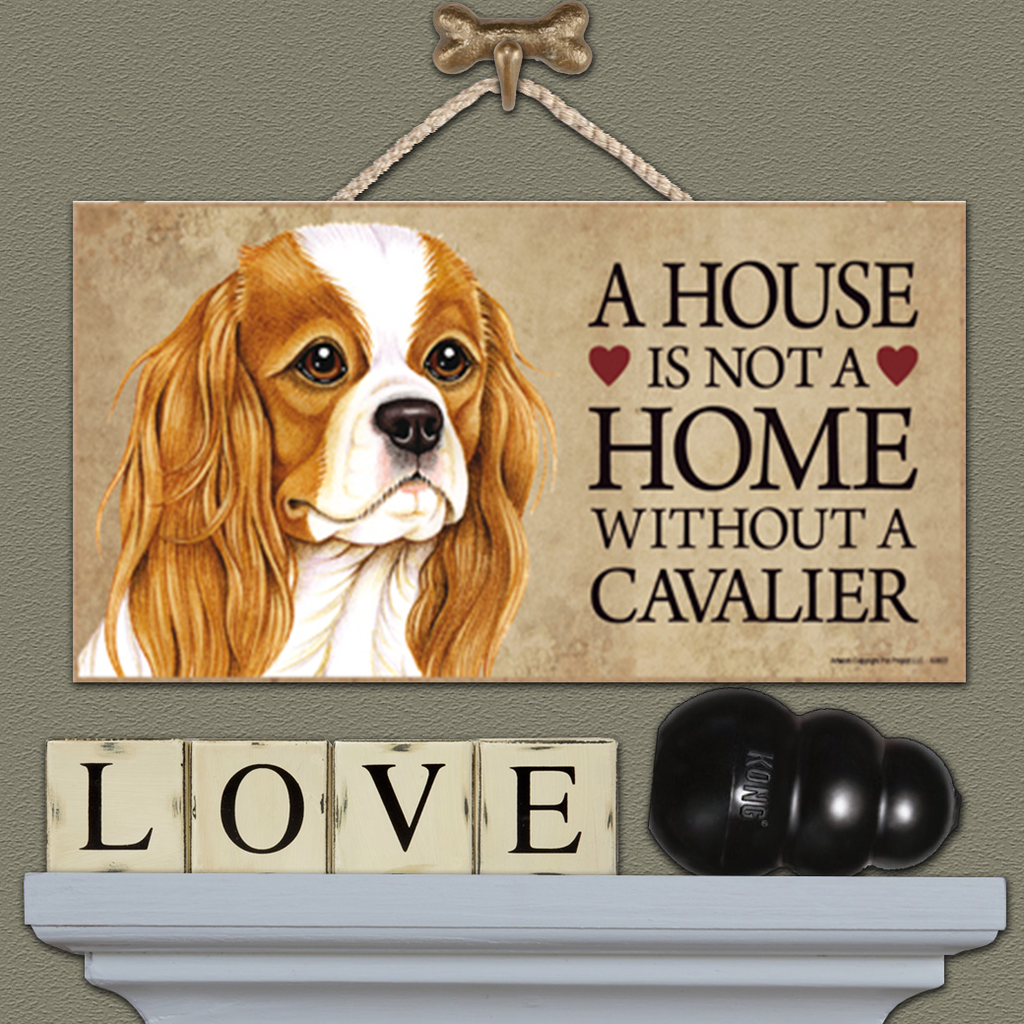 House is Not a Home - Cavalier