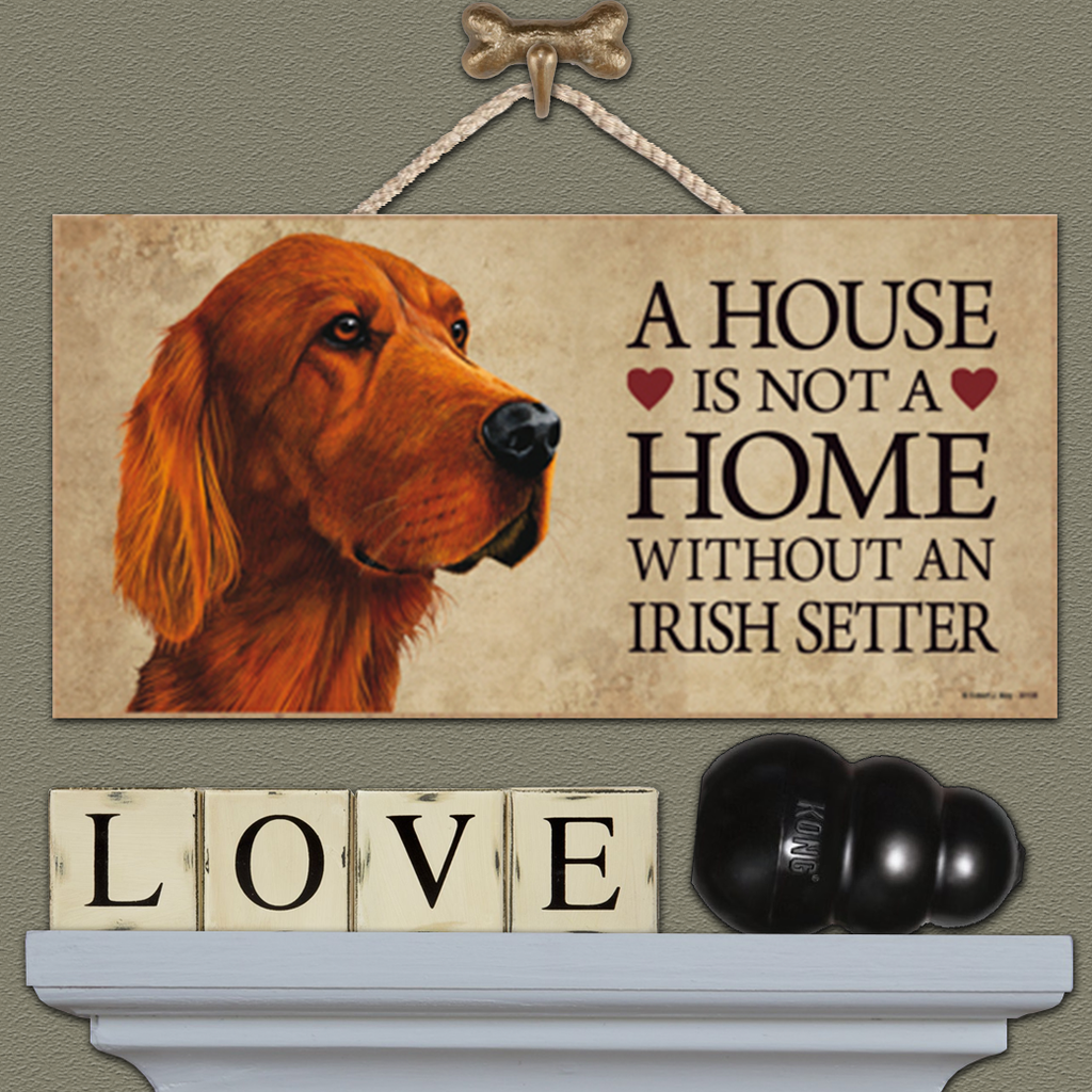 House is Not a Home - Irish Setter