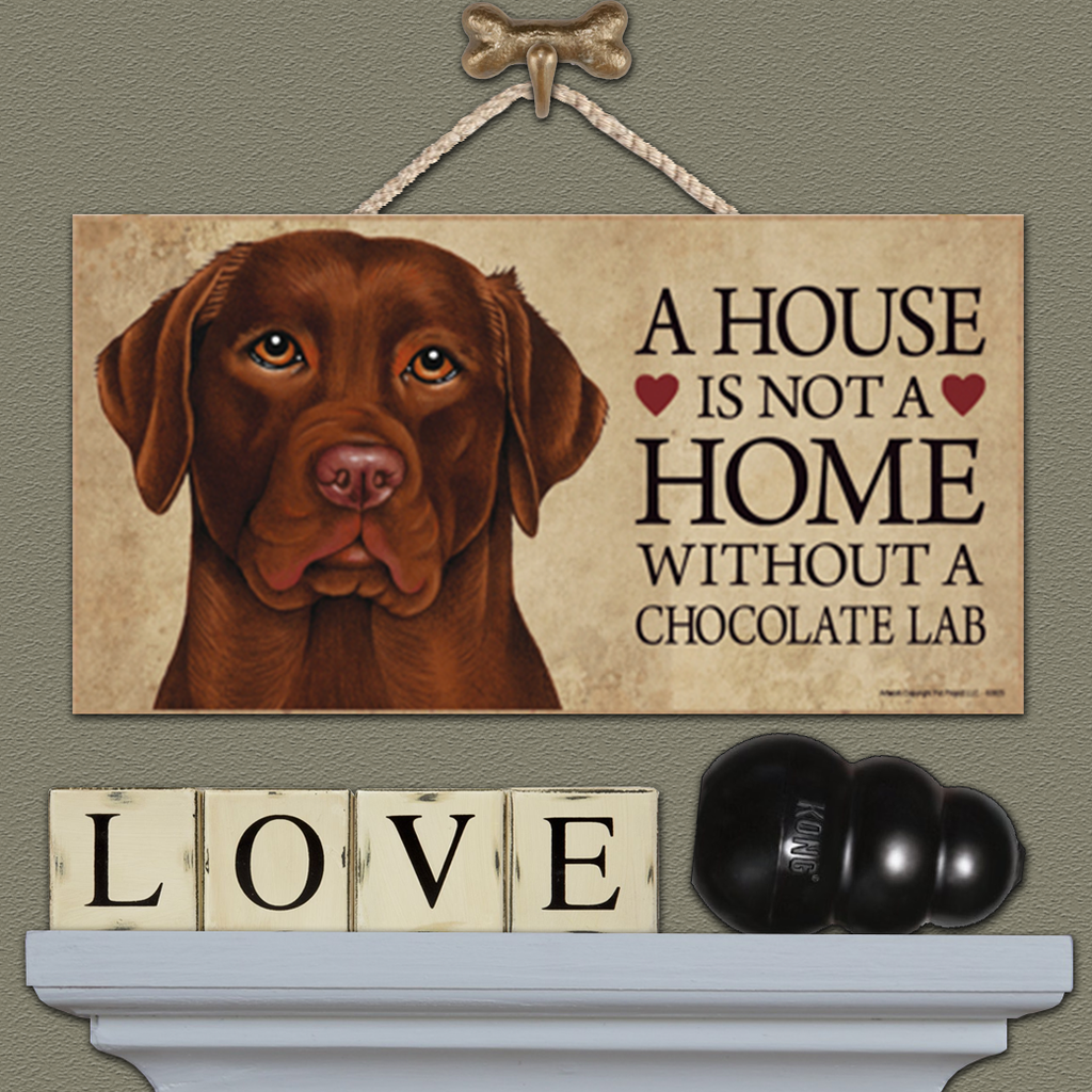 House is Not a Home - Lab Chocolate