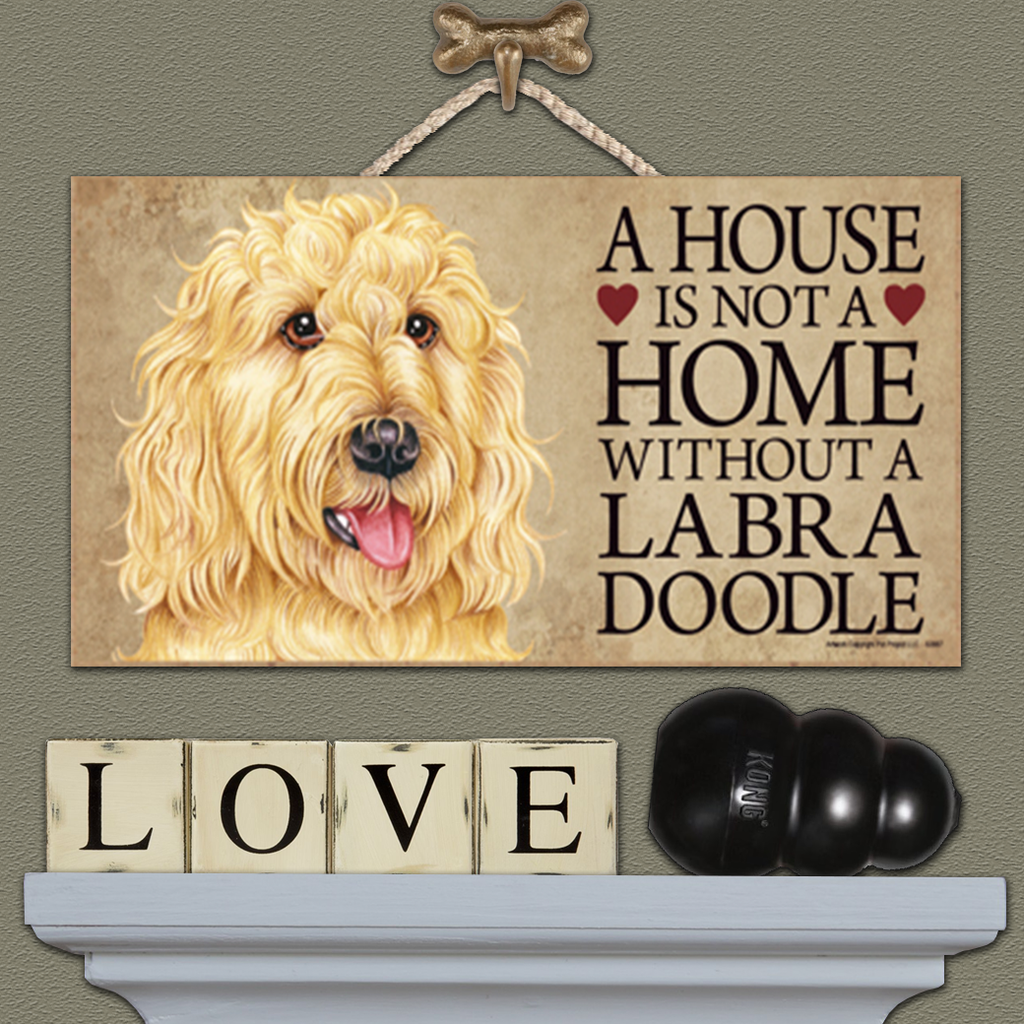 House is Not a Home - Labradoodle