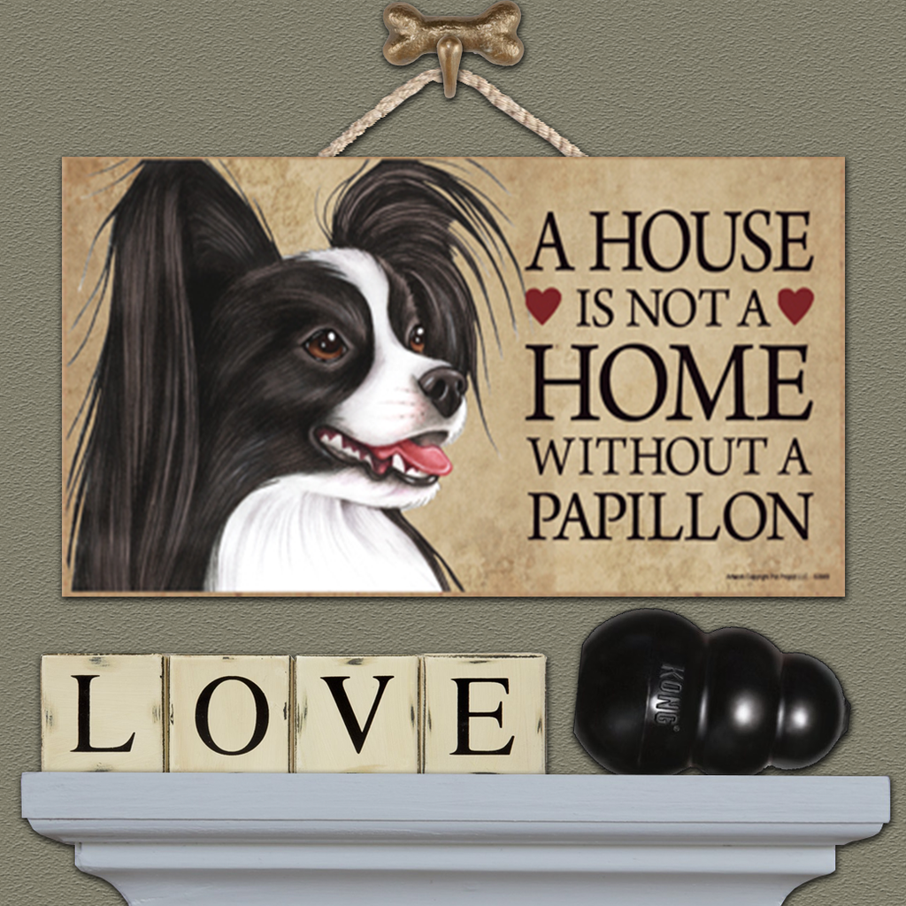 House is Not a Home - Papillon