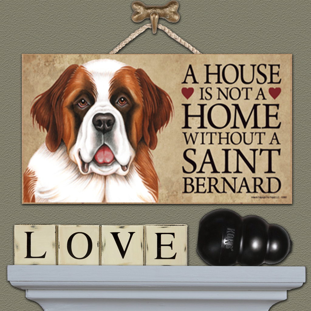 House is Not a Home - Saint Bernard