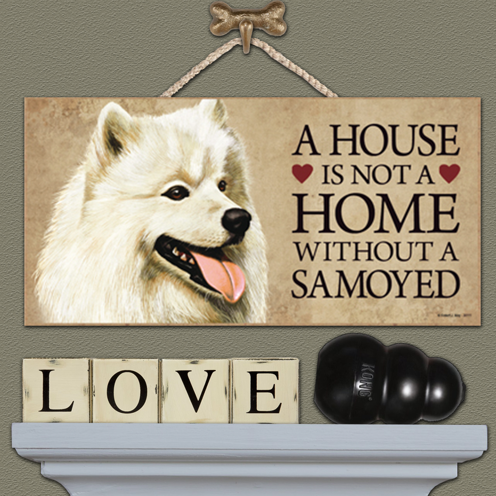 House is Not a Home - Samoyed