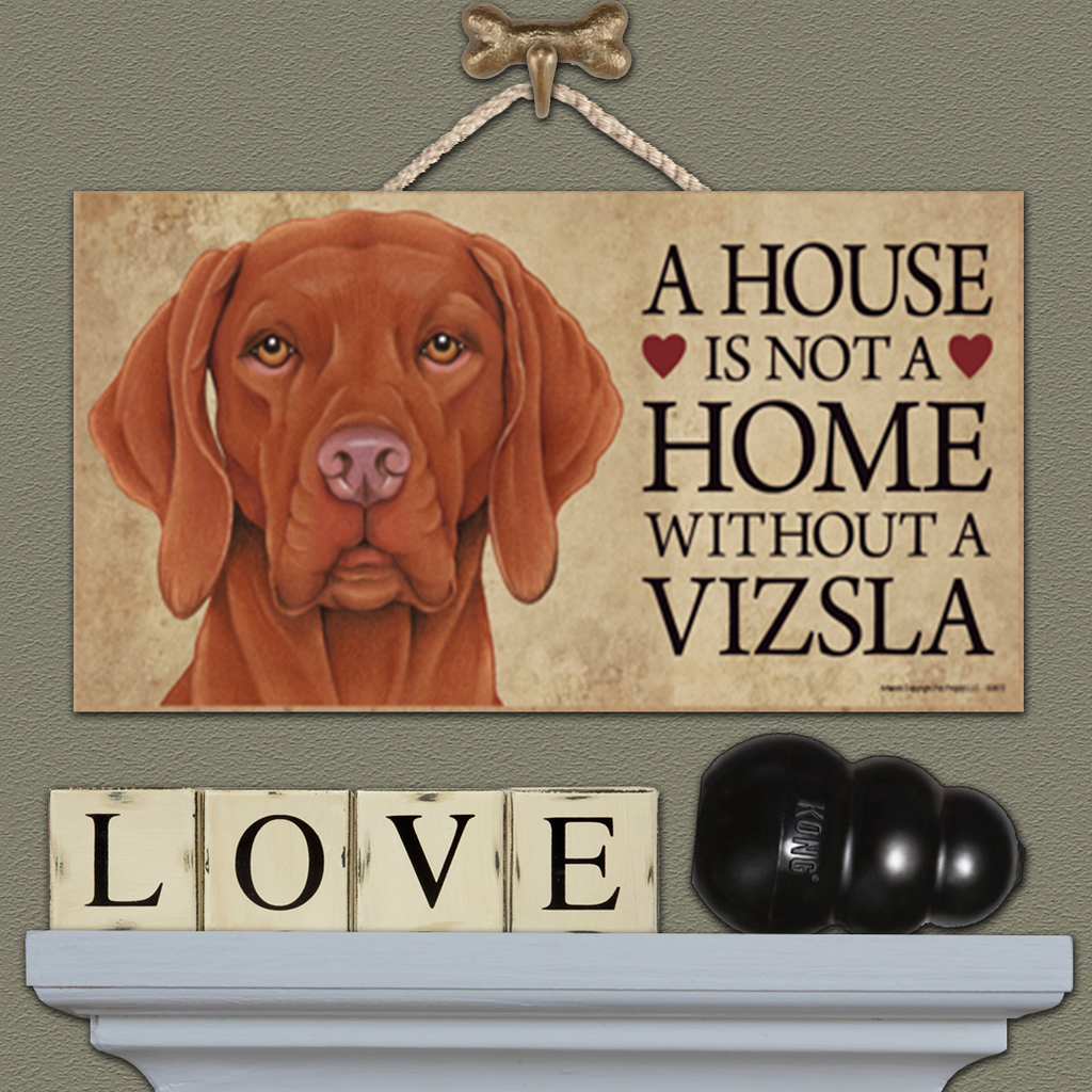 House is Not a Home - Vizsla