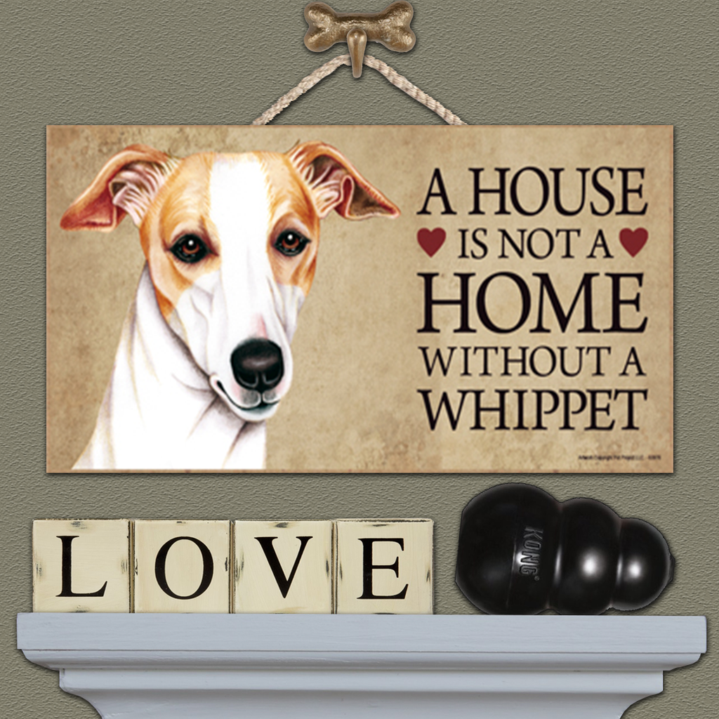 House is Not a Home - Whippet