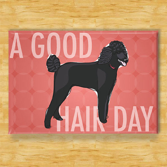 *Poodle Magnet - A Good Hair Day