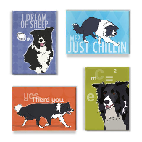 ** Border Collie Magnet Set
