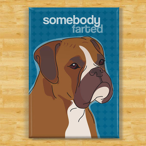 Boxer Magnet - Somebody Farted