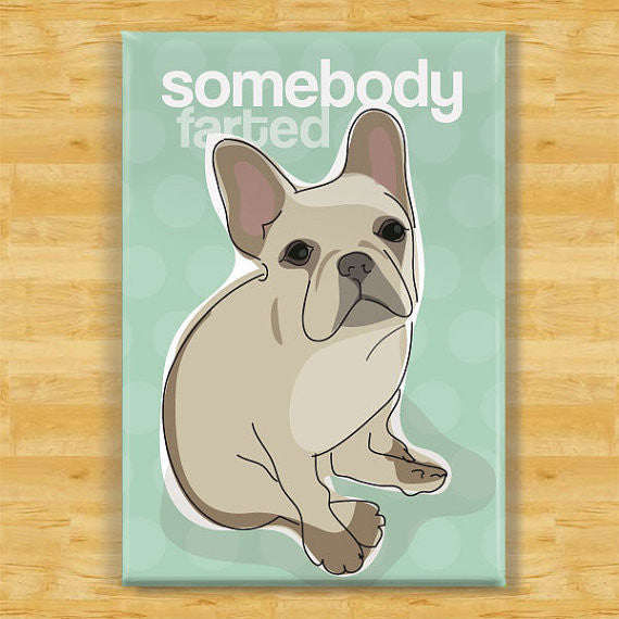 French Bulldog Refrigerator Magnet - Somebody Farted - Fawn French Bulldog