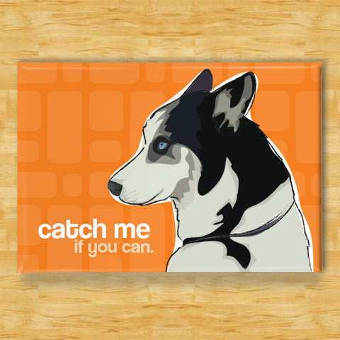 ** Husky Magnet - Catch Me if You Can