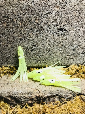 "2"" FLUORESCENT CHARTREUSE HOOTCHIES"