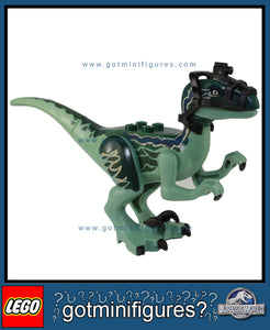 "LEGO JURASSIC WORLD - ""BLUE"" RAPTOR Dinosaur 75917"