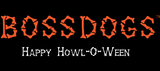 Limited Edition Howl-O-Ween Shirt (Ladies)
